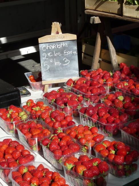 Strawberries of the Périgord